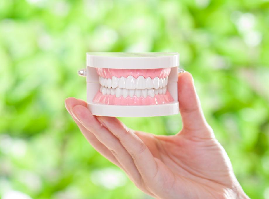 高齢者のための入れ歯相談